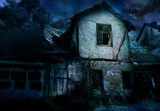 scary house poster