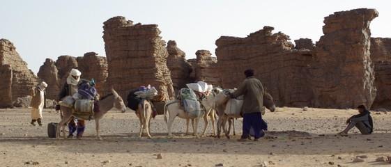chargement des ânes