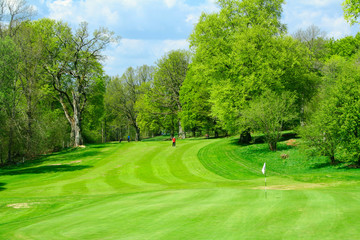 beautiful golf course in fresh green colors of spr
