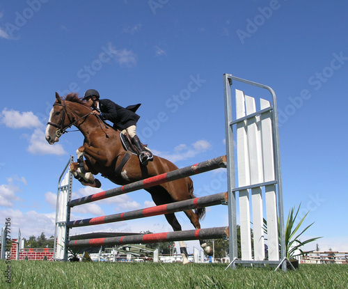 show jumping - 2797156
