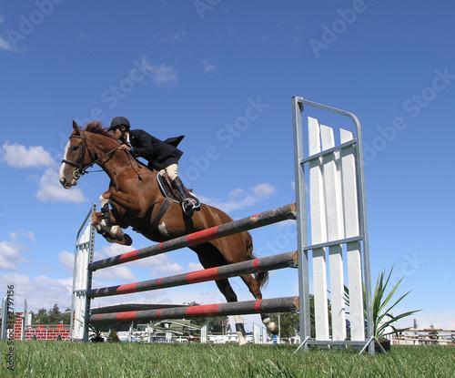 Foto op Plexiglas Paardrijden show jumping