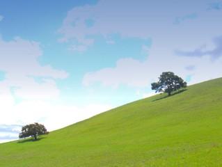 green hills - blue sky