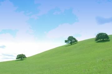 green hills - blue sky 1
