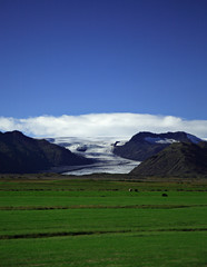 glacier and green fields