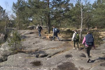 randonneurs en forêt de fontainebleau