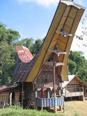 a traditional toraja house, rantepao, sulawesi island, indonesia