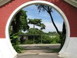 peeking into an oriental garden poster