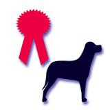 dog award poster
