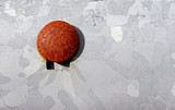rusted button poster