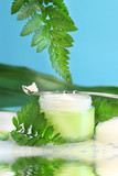 rejuvenating face cream with green ferns poster