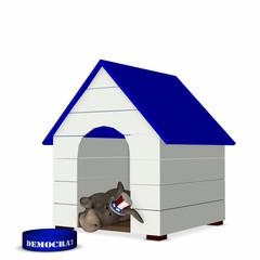 democrat - doghouse 1
