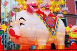 year of pig, the chinese zodiac