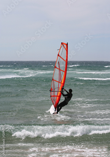 windsurf portrait