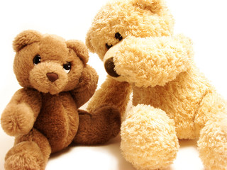 teddy bears friends