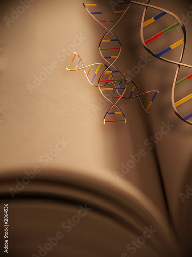 genetic engineering and the pursuit of perfection Against the impulse behind the pursuit of genetic perfection, it enjoins its reader to perfect her natural talents and gifts in this way, sandel misses a key.