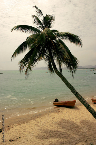 tropical island - 2864932