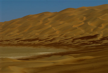 liwa brown dunes