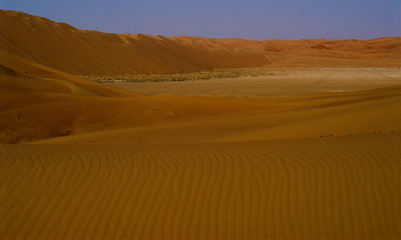 liwa shapkra view