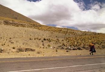 peruvian, walking