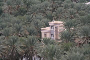 palmenvilla