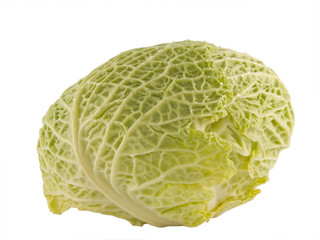 cabbage close up