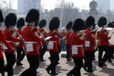 buckingham palace army parade poster