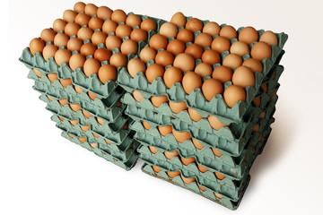 huevos en bandejas de carton 2