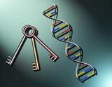beautiful representation of genetics poster