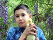 boy holding a duckling / duck