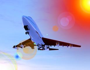 plane in flight 19