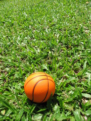 single basketball on the grass field