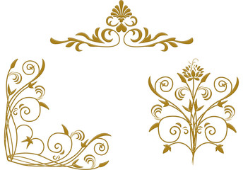 tuncay, ivy, frame, creeper, vine, winder, common