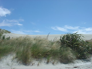 Sand Dune and Blue Skies