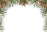 Fototapety pine frame