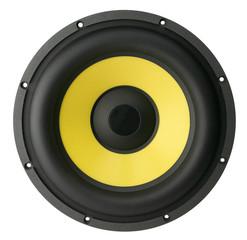 big speaker for car sound