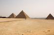 the tree pyramids
