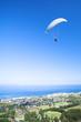 paraglider ridge soaring next to the mountain