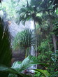Quadro praslin-waterfall