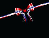 patriotic ribbon poster