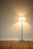 floor lamp on hardwood floor. poster