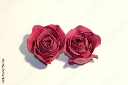 Leinwanddruck Bild rosen