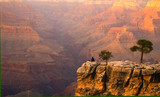 relaxin at the grand canyon-