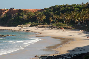 praia e palmeiras em Pipa Brasil