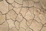 dry mud field poster