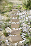 Stepping stone pathway with oyster shells. poster
