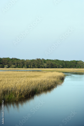 Marsh landscape on Bald Head Island, North Carolina.