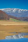landscape from mavrovo region poster