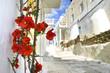 flowers on a mukonos street