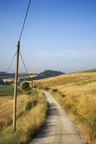 Telephone pole by dirt road and rolling hills in Tuscany, Italy. poster