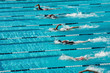 canvas print picture - competitive swimming